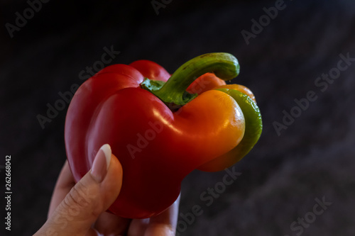 red pepper ugly shape on a dark background in the hand horizontal orientation - 262668042