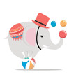 Circus elephant on ball vector - 262719251