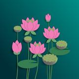 Pink lotus bloom in the pool