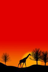 Giraffe mit Textfreiraum