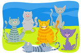 cats and kittens animal characters group