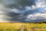 Rain clouds over Amboseli