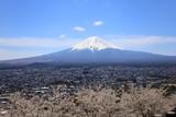 晴れた春の日の富士山と町
