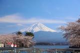 河口湖 湖畔の富士山
