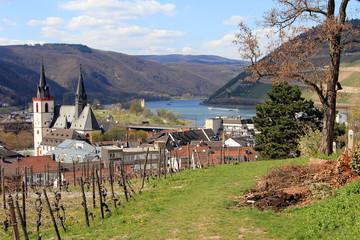 Blick auf Bingen am Rhein