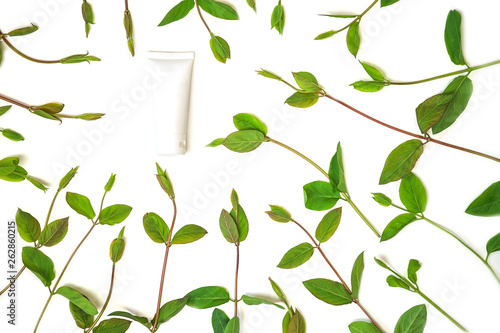 Wreath frame made of spring green leaves and jar of cosmetic cream, isolated on white background. Concept for cosmetic cream, beauty spa, anti-age salon therapy. Flat lay, top view, copy space. - 262860215