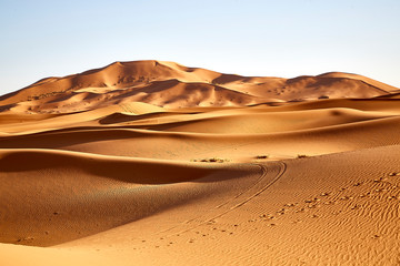 sand dunes desert sahara
