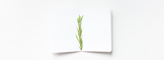 Blank notepad pages with rosemary twig © dvoevnore
