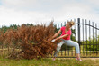 Quadro Woman removing pulling dead tree