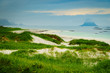 Sea coast grassy dunes Andoya Norway