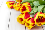 Fresh beautiful tulips on white wooden background. Holiday background.