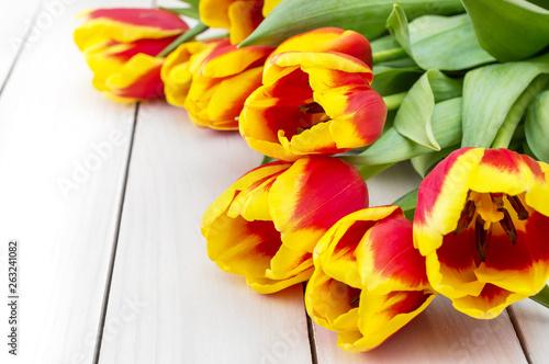 Fresh beautiful tulips on white wooden background. Holiday background.