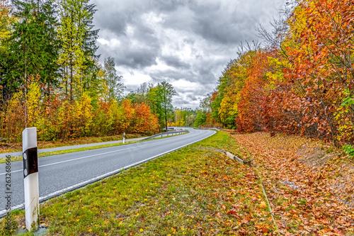 canvas print picture Herbstlandschaft an einer Straße