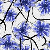 Cornflowers seamless pattern. Illustration on white background.
