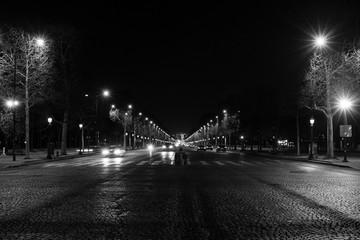 The Avenue des Champs-Élysées, Paris, France