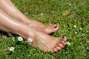 woman bare feet on spring grass and daisy flowers
