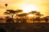 Hot air balloon at sunrise over the African savanna