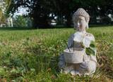 Buddha in grass