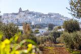 Ostuni mit Olivenbaum in Italien
