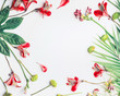Leinwandbild Motiv Layout with tropical leaves and exotic flowers on white background, top view. Copy space. Floral frame. Flat lay