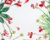 Layout with tropical leaves and exotic flowers on white background, top view. Copy space. Floral frame. Flat lay