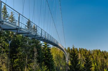 Hängebrücke Wild Line