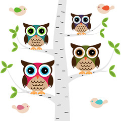 Owl family on a tree with birds