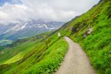 Alpine peaks of Grindelwald and Jungfrau. Landskape background of Bernese highland. Alps, tourism, journey, hiking concept.