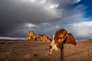 Horse skull on a fence post in a western desert landscape