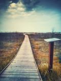 Una passerella di legno conduce alla spiaggia nei pressi di Pesaro nella regione Marche in Italia