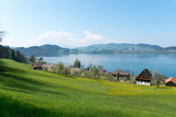 idyllic Swiss country mountain landscape with farms lake and mountains in the distance