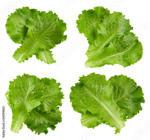 lettuce leaves Clipping Path © atoss